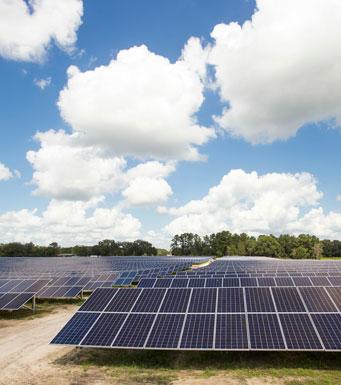Filas de paneles solares en el centro de energía solar Sunshine Gateway de FPL